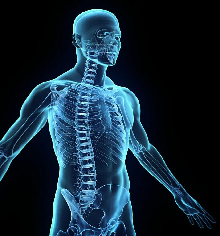 Neuromuskuläre Therapie – NMT | Naturheilpraxis Starnberg
