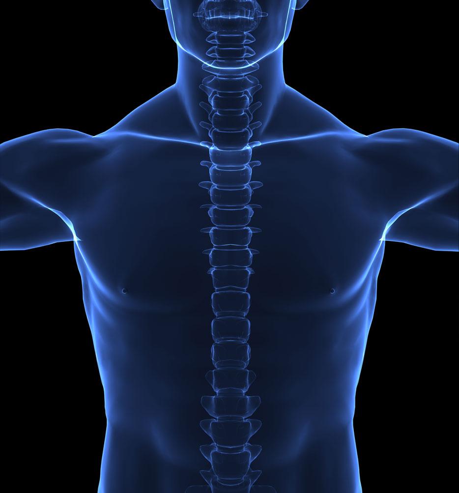 Sanfte Chiropraktik und Osteopathie