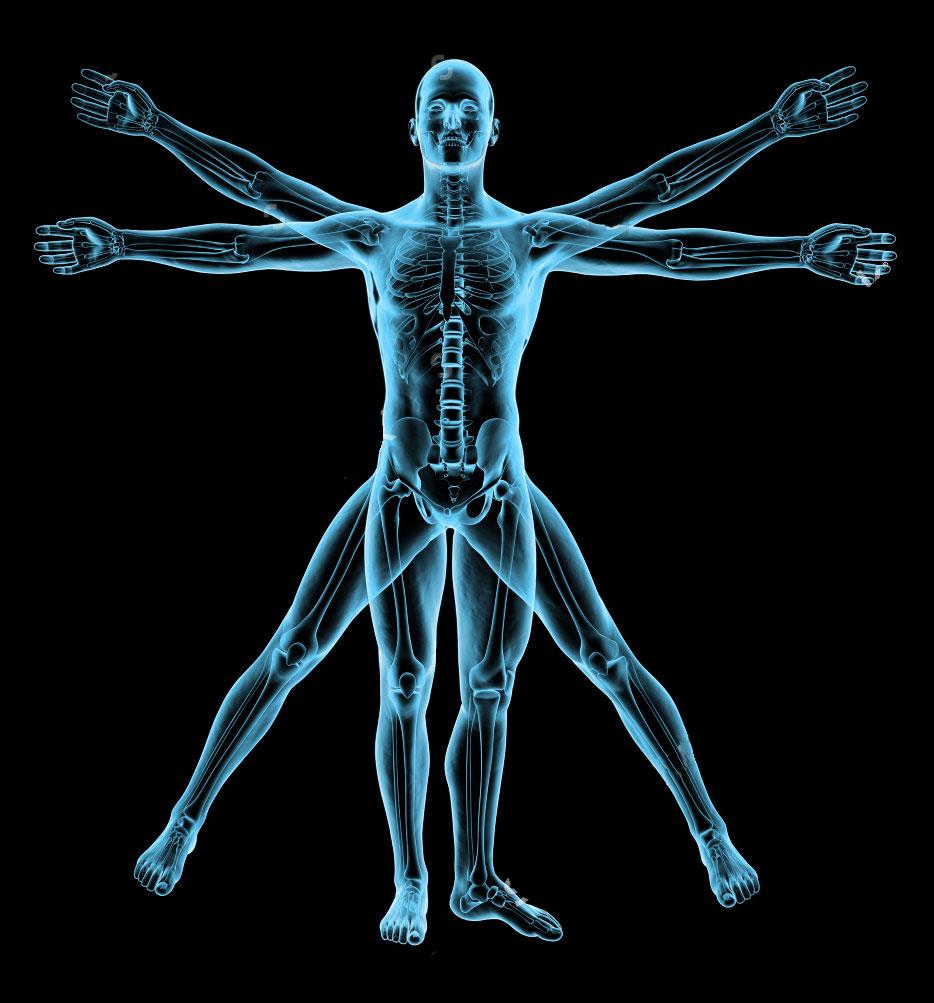 Körperanalysen mit INNERSCAN